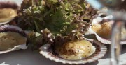 seafood wara restaurant